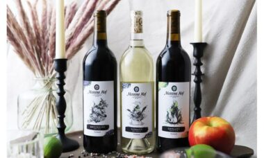 Texas Winery Shake Hands with VISION, debuts AR Wine Labels